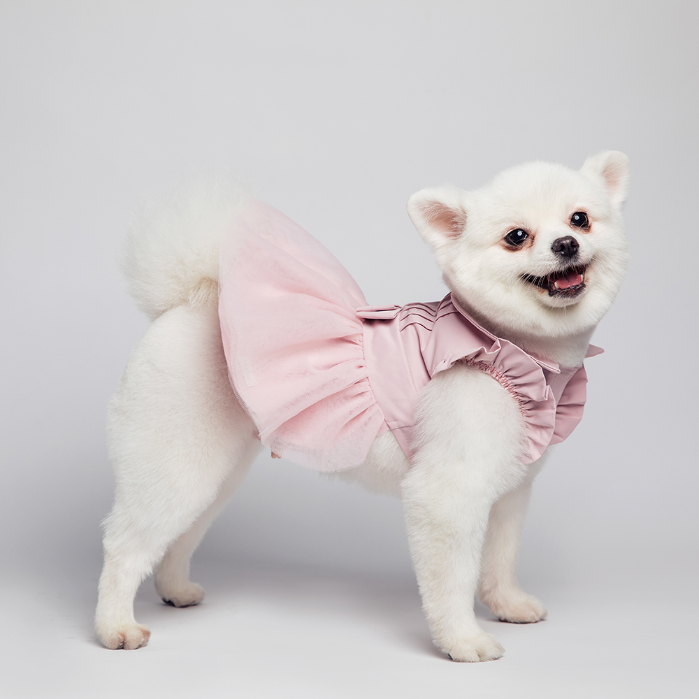 dog dress main picture 2