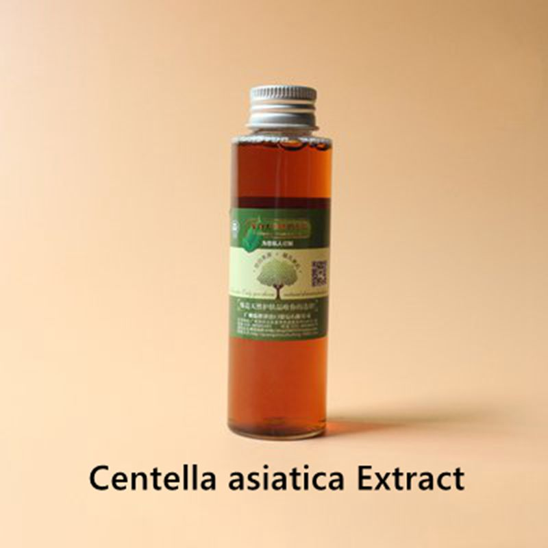 Centella Asiatica Extract Protecting Skin, Anti-oxidation, Reducing Weight And Swelling, Anti-allergy, Promoting Blood Circulati