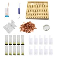 Полный пчелиный вывод маток комплект чашек система пчеловодства оборудование инструменты