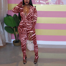 2019 Autumn Women Bodycon Jumpsuits V-neck Long Sleeve Skinny Long Rompers Zebra Printed Jumpsuits Sexy Night Club Overalls(China)