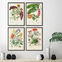 Arte de pared de plantas botánicas pintura de Estilo Vintage flores verduras frutas gráfico lienzo póster para el hogar sala de estar decoración Nórdica