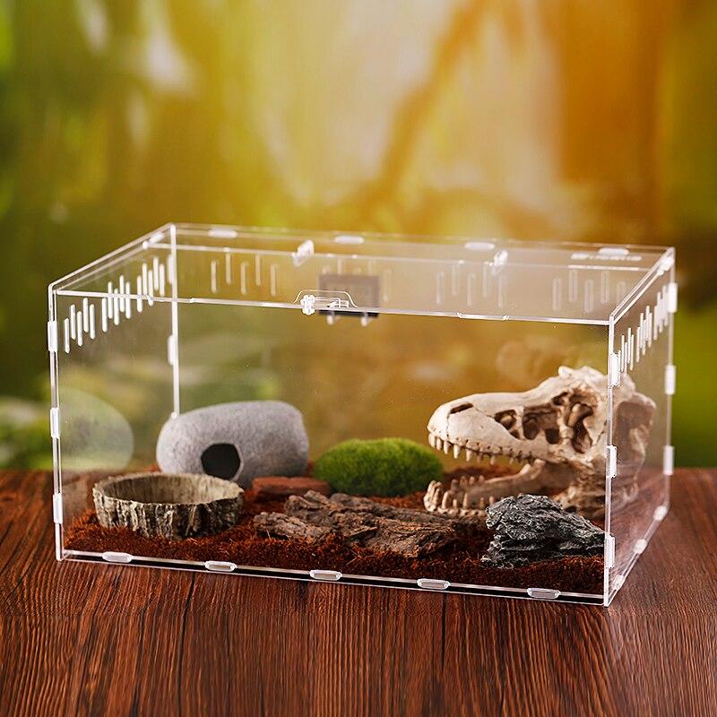 Paisagismo One-horned Pá de Fadas Para Adultos caixa de Inseto besouro
