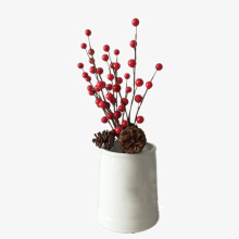 10pcs Simulation Berry Branch Red Foam Berry and Pine Cone Set Christmas Decoration Flower Artificial Berry Branch steve berry patriot threat