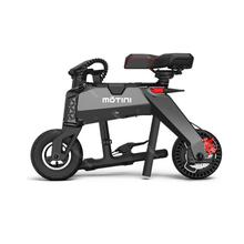 Ladies Electric Bike Two Wheels Electric Bicycle With Removable Battery 46V 250W Portable Mini Folding Electric Scooter Bicycle
