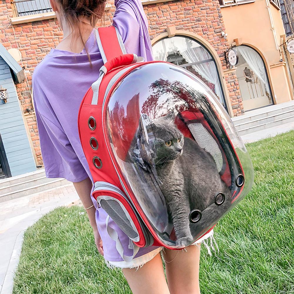 Kot niosący plecak okno astronauta torba dla kotów Puppy plecak przewoźnik dla psów Trave Bag artykuły dla zwierząt Dropshipping