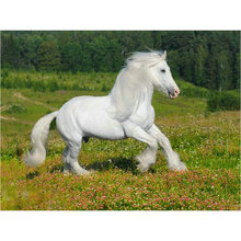 5d diamond painting white horse full square diamond mosaic animal crafts embroidery home decoration 5d diamond painting horse kids ranch animal full square diamond mosaic rhinestone crafts embroidery home decoration