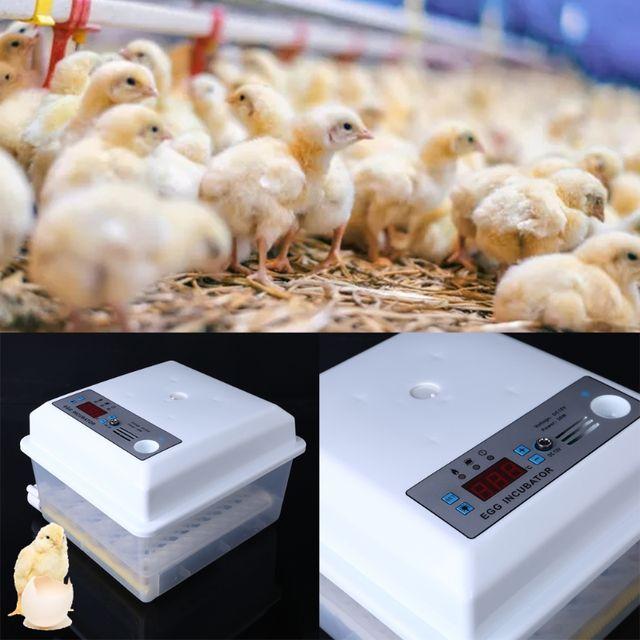 Fully Automatic Farm Egg Incubator