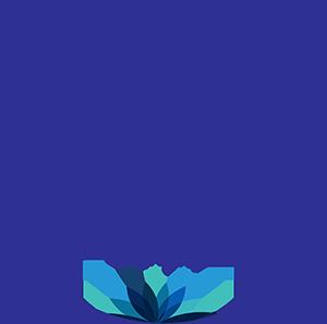 镜子 logo