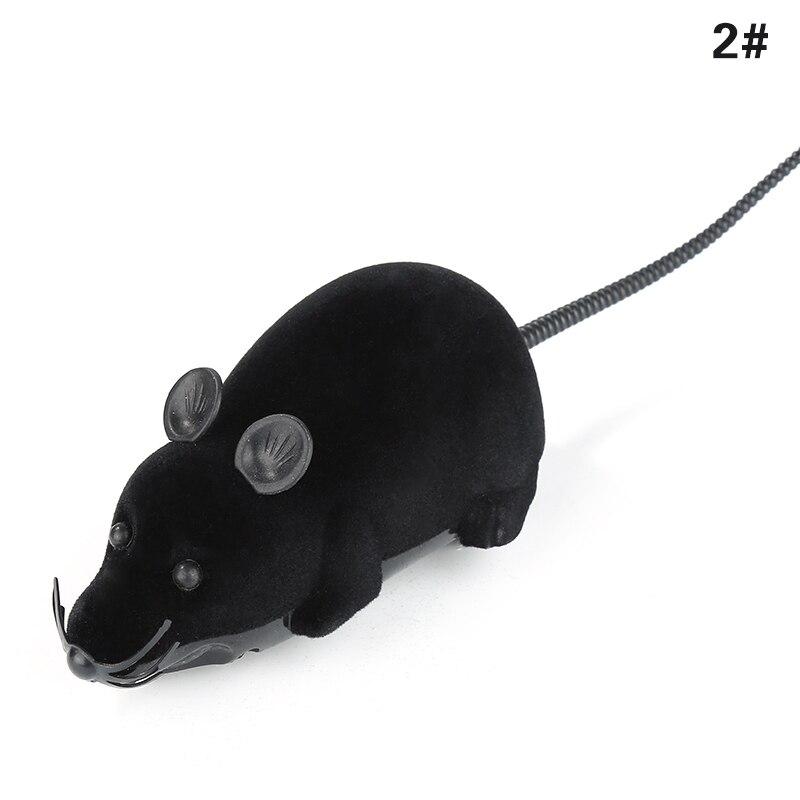 Black black ears
