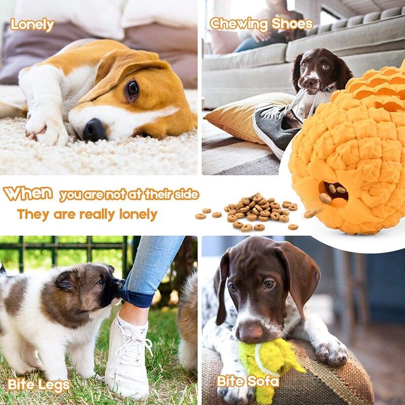 Brinquedos cães