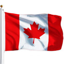 DAODAO Canada Flag Aerlxemrbrae Flag Great Canadian Standard Banner 5x3FT 90x150CM Canada National FLAG Polyster Dropshipping 201 countries flag national flag symbol fridge magnets combine order accept wholesale business souvenirs