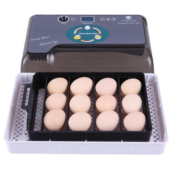 12 Egg Automatic incubator hatching machine Adjustable Egg Tray Practical Fully Automatic Poultry Incubator Set in Feeding Watering Supplies from Home Garden