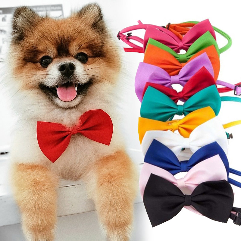 Pet Dog Cat Necklace Adjustable Strap for Cat Collar Dogs Accessories pet dog bow tie puppy bow ties dog Pet supplies 1