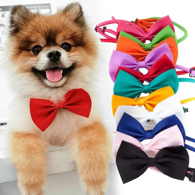 Pet Collana Del Cane Del Gatto Cinghia Regolabile per Collare per Gatti Cani Accessori Per animali pet Dog bow tie cucciolo papillon dog Pet forniture