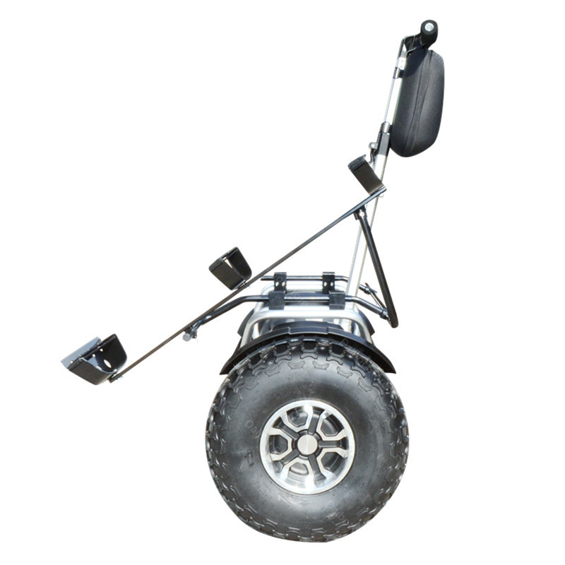 New Golf Electric Cart Two Wheeled Self Balancing Scooters With APP 19 Inch 1200W 60V Off Road Golf Electric Scooter For Adults  (2)