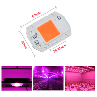 100pcs LED Grow light Full Spectrum COB Chip 20W 30W 50W DIY Growing Plants lamp For Indoor Plant Hydroponic Greenhouse System