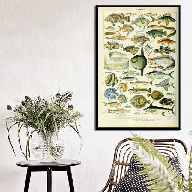 Ocean Sea Shell Fish Animal Vintage Life Chart Biology Poster And Prints Painting Art Wall Pictures For Living Room Home Decor