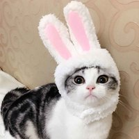 costume-props-gift-cosplay-clothing-dress-cap-free-size-headdress-comfortable-short-plush-pet-cat-dog-easter-rabbit-ear-hat