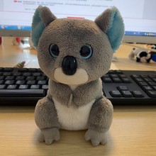 Ty Beanie pluszowe zwierzę Koala miękkie nadziewane zabawki 15cm