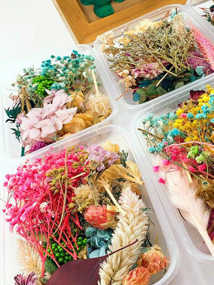 Epoxy Resin Mold Decorative Pressed Jewelry Floral-Decors Dried Flowers Uv-Resin-Filling