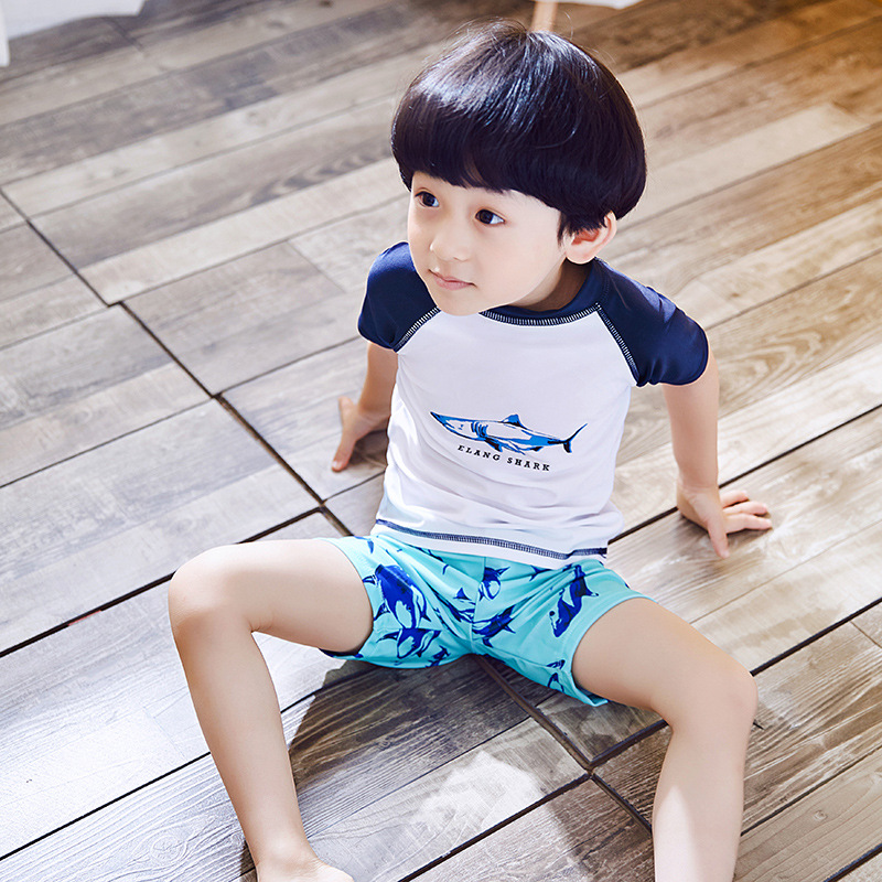 Boy New Style Korean-style Children Two-piece Swimsuits Beach Sun-resistant BOY'S Baby Swimsuit Set Shark Pattern