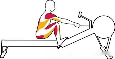 use rowing machine to rowing