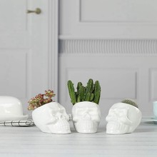 White Ceramic Skull Shaped Succulent Planter Pots Set Of 3, Cute Cactus Plant Pot Creative Pen Pencil Holder for Home Office Des(China)