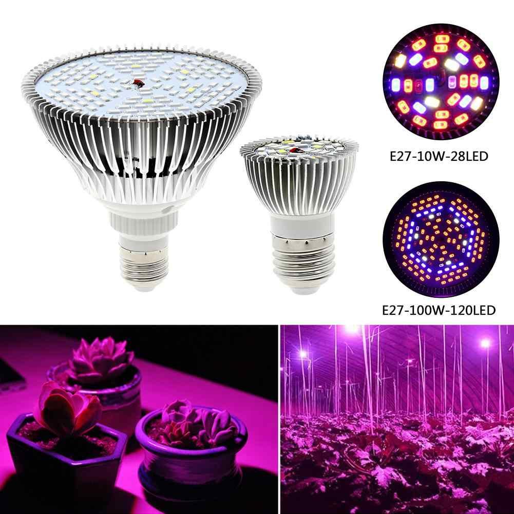 100W de espectro completo LED Grow Light 150 Led lámpara de planta bombilla LED para plantas de flores de acuario semillas de vegetales de jardín efecto invernadero E27