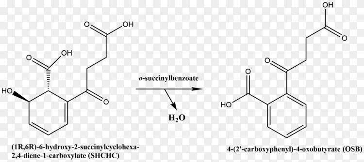 化学反应催化烯醇化酶脱水反应化学反应化合物化学反应PNG图片素材免费 ...