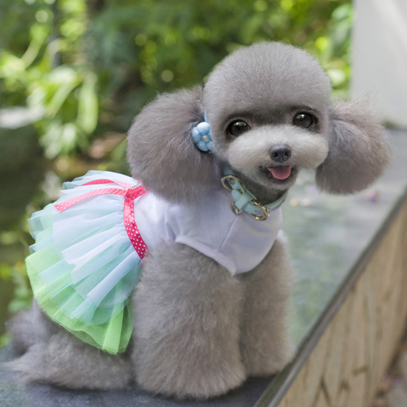 XiangYue SISAVE Chihuahua Clothes,Dog Girl Outfit Puppy Cute Dress Apparel