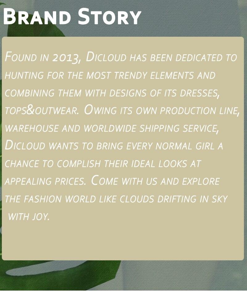 Dicloud_16