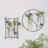 Wall Hanging Flower Vase Iron Glass Hydroponics Planter Pot Transparent Hanging Flower Bottle Home Ornament Decoration