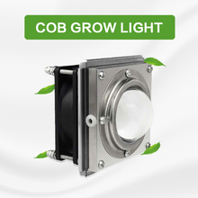 2020 새로운 전체 스펙트럼 COB 식물 성장 빛 50W LED 온실 채식 즙이 많은 채우기 빛 정원 보육 꽃 모 종 램프