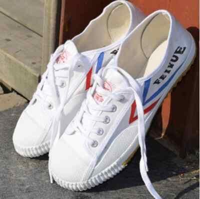 Dafu Feiyue Shaolin Kungfu brezentowych butów męskie i