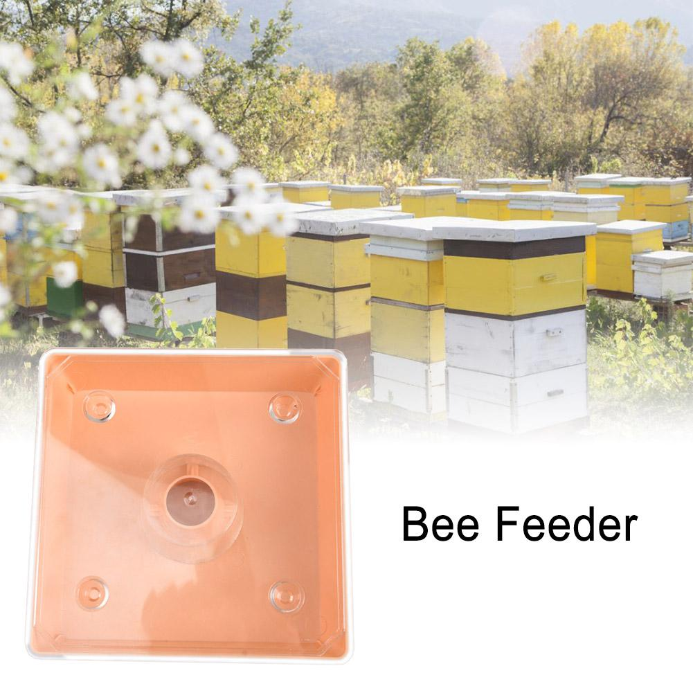 Square Bee Feeder Beekeeping Tools Convenient Large Capacity Non-toxic Honey Equipment Water Bee Water Feeder For Apiary