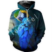 Tessffel animal New Fashion Harajuku casual cartoon parrot  bird 3D Printed Hoodie/shirts Mens Womens hiphop funny style-4