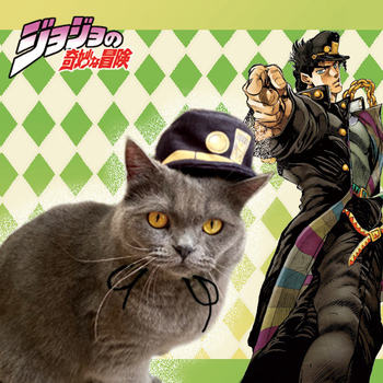 Anime JoJos Bizarre Adventure Kujo Jotaro Pequeño gato Cosplay Otoño Invierno perrito sombrero gorro más cálido suministros para mascotas