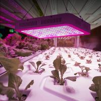 AC 85 265V 1000W Indoor LED Plants Growing Light Full Spectrum COB Spotlight Lamp For Greenhouse Comes With Hook