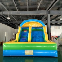 Customized Color Outdoor Inflatable Slide with Free Air Blower