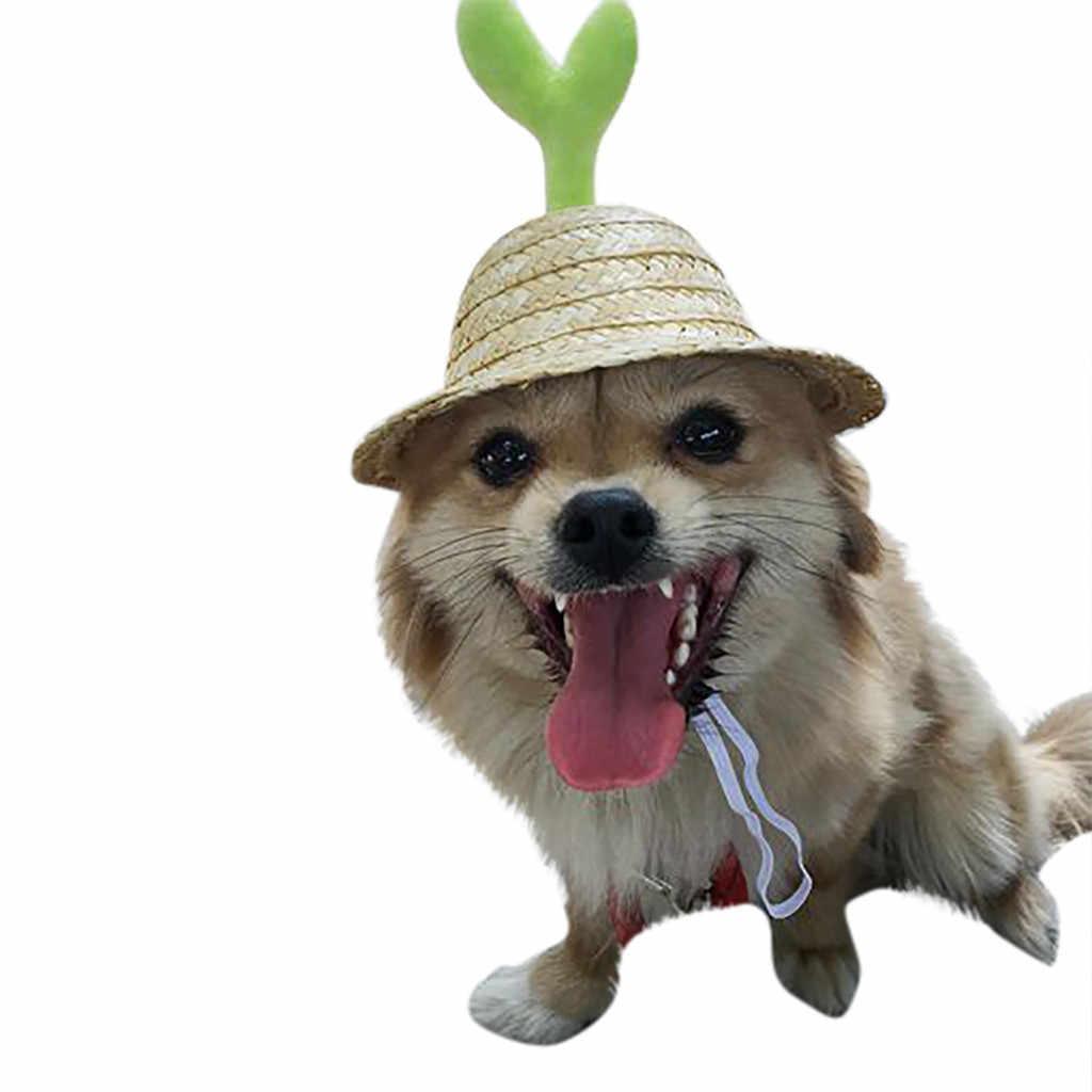 لطيف الحيوانات الأليفة قبعة بواقٍ للشمس وعاء طعام الكلب القش قبعة الترفيه السفر يندبروف قبعات للحماية من الشمس للكلاب يحمي رئيس و عيون محبوبتك من الشمس YMP
