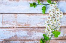цена на Vinyl Custom Photography Backdrops Prop Flower and Wood Planks theme Photo Studio Background M191110-08