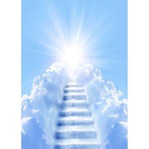 Image 3 - Słońce błękitne niebo biała chmura drabina fotografia tło Vinyl zdjęcie tła Studio dla dzieci portret dziecka sesja zdjęciowa