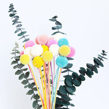 20 Pcs Colorful Ball Preserved Flower Diy Home Decoration Bouquet Photo Props Real Natural Dried Flowers Party Flower Bouquet