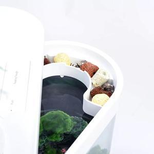 Image 3 - Xiaomi geometria aquário aquaponics ecossistema pequeno jardim de água ecológico aquário aquário transparente