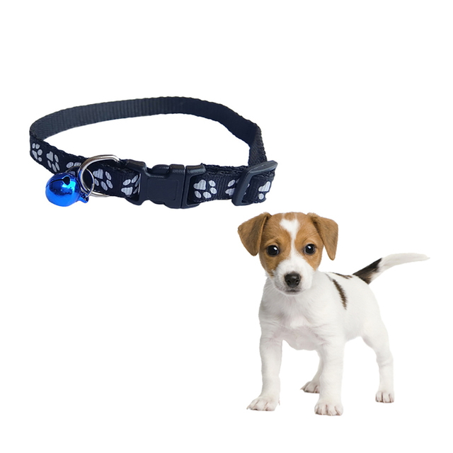 Kitten Paw Print Collar With Bell  2