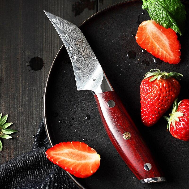 YARENH 3 Inch Fruit Knife 67 Layers Damascus Steel Best Kitchen Knives Sharp Chef Fruit Peeling Japanese Knife Rosewood Handle