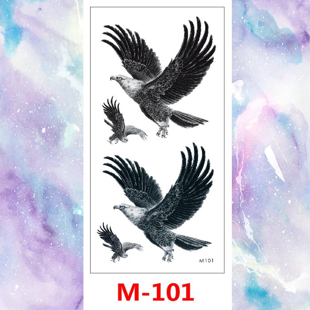 M-101