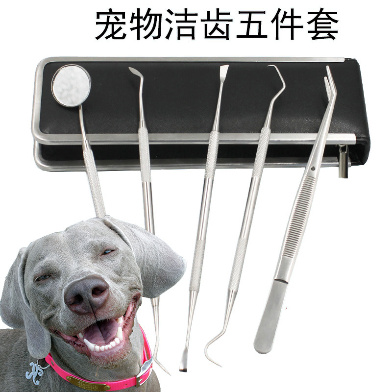 Dog except Dental Calculus in Addition to Bad Breath Teddy Cleaning Oral Dental Explorer US Dental Scaler Medical Pet Tools