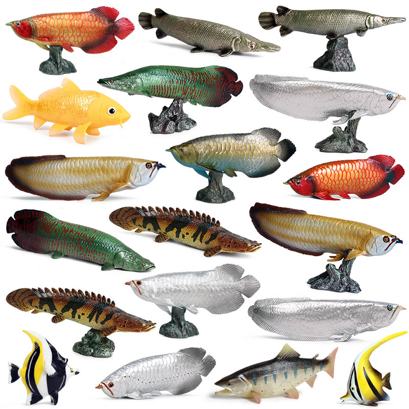 Oenux Freshwater Sea Life Animals Simulation Coelacanth Piranha Bass Fish Salmon Action Figure Model Lifelike Educational Toy