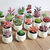 Artificial Succulent Bonsai Creative Ornaments for Home Table Garden Decoration Artificial Plants with Pot
